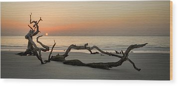 Beach Art Cropped Wood Print by Greg Mimbs