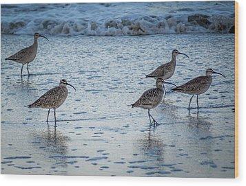 Beach Birds Wood Print