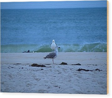 Wood Print featuring the photograph Beach Birds by  Newwwman