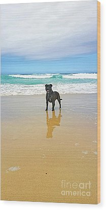 Wood Print featuring the photograph Beach Dog And Reflection By Kaye Menner by Kaye Menner