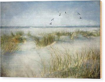 Beach Dreams Wood Print by Annie Snel