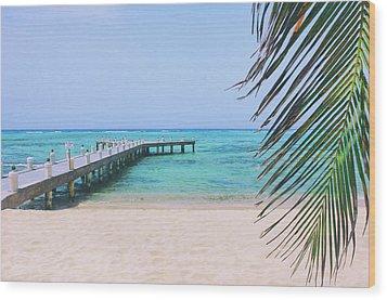 Beach Dreams Wood Print
