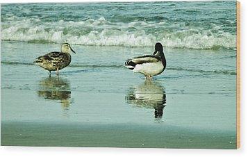 Beach Ducks Wood Print