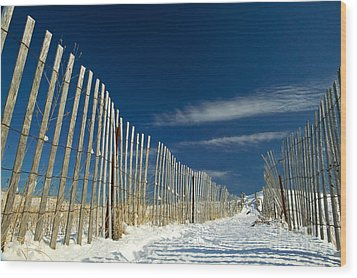 Beach Fence And Snow Wood Print by Matt Suess