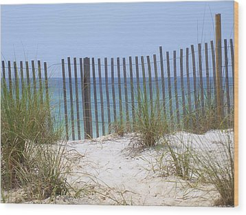 Beach Fence Wood Print by James Granberry