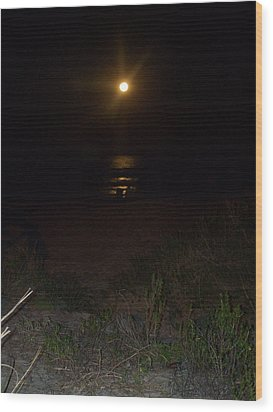 Beach Full Moon Wood Print by Patricia Taylor