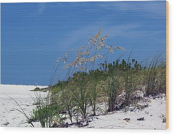 Beach Grass 3 Wood Print by Evelyn Patrick