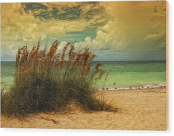 Beach Grass Wood Print by Gina Cormier