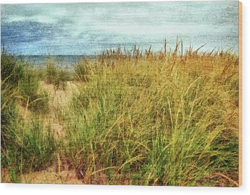 Wood Print featuring the digital art Beach Grass Path - Painterly by Michelle Calkins
