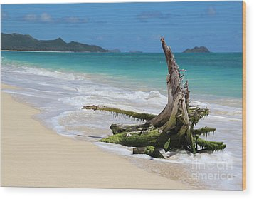 Beach In Hawaii Wood Print by Anthony Jones