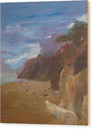 Beach In Santa Barbara Wood Print by Irena  Jablonski