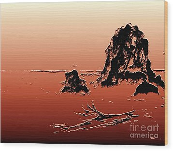 Wood Print featuring the photograph Beach Log by Carol Grimes