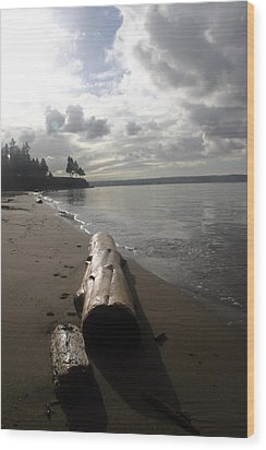 Beach Logs Wood Print by Mary Haber