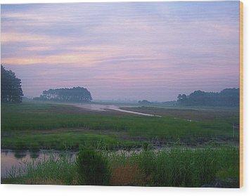 Beach Marsh Sunrise - 14 Wood Print by Donovan Hubbard