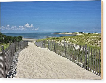 Wood Print featuring the photograph Beach Path At Cape Henlopen State Park - The Point - Delaware by Brendan Reals