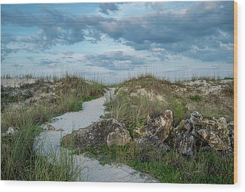 Wood Print featuring the photograph Beach Path by Louis Ferreira