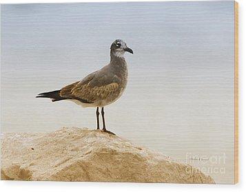Wood Print featuring the photograph Beach Pose by Deborah Benoit