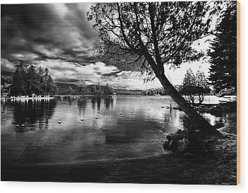Wood Print featuring the photograph Beach Silhouette by David Patterson