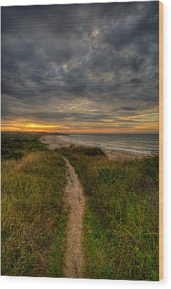 Beach Trail Wood Print by Mike Horvath