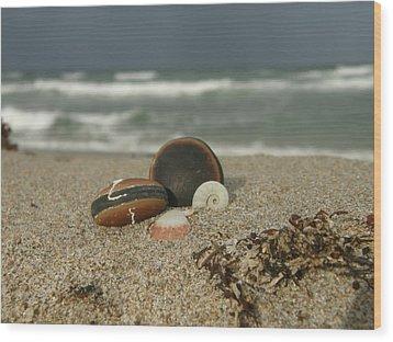 Beach Treasures 1 Wood Print by Kimberly Mohlenhoff