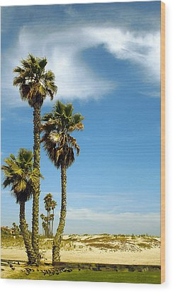 Beach View With Palms And Birds Wood Print by Ben and Raisa Gertsberg