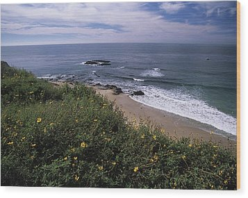 Beach Waves And Wildflowers Wood Print by Don Kreuter