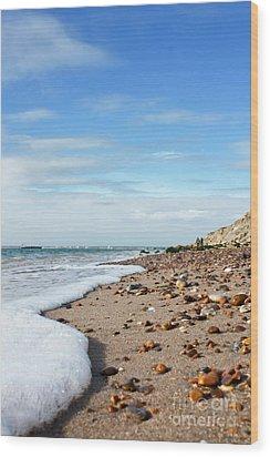 Beachcombing Wood Print by Terri Waters