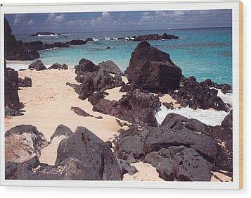 Beaches Of Hawaii Wood Print by Lori Mellen-Pagliaro