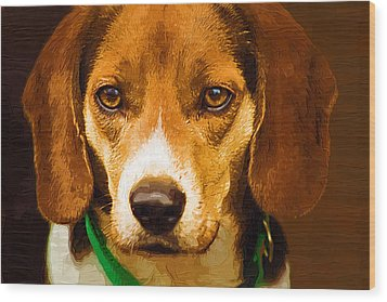 Beagle Hound Dog In Oil Wood Print by Kathy Clark