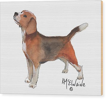 Beagle Watercolor Painting By Kmcelwaine Wood Print