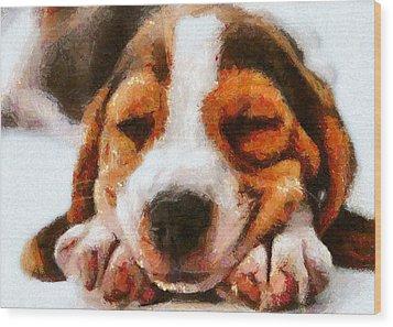 Beagle Puppy Wood Print