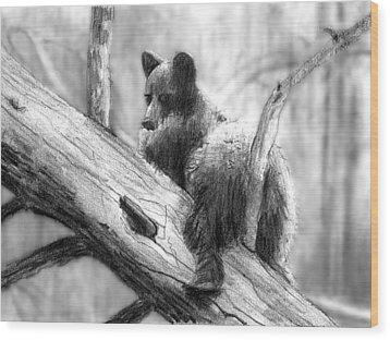 Bear Bottom Wood Print by Paul Sachtleben