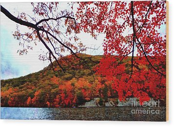 Wood Print featuring the photograph Bear Mountain Hessian Lake Autumn by Janine Riley