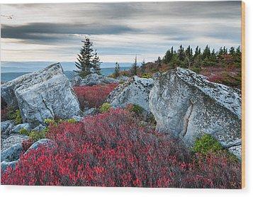 Bear Rocks Preserve West Virginia Wood Print by Mark VanDyke