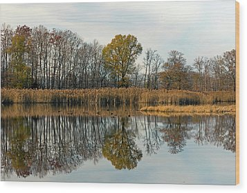 Bear Swamp Mirror Wood Print