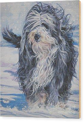 Bearded Collie In Snow Wood Print by Lee Ann Shepard