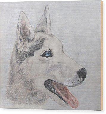 Beare Wood Print