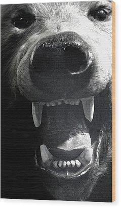 Beared Teeth Wood Print by Jez C Self