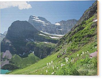 Beargrass - Grinnell Glacier Trail - Glacier National Park Wood Print