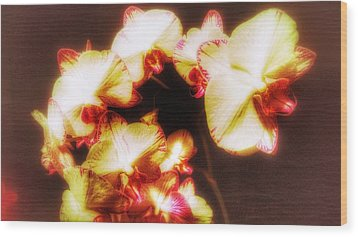 Wood Print featuring the photograph Beautiful Orchid by Isabella F Abbie Shores FRSA