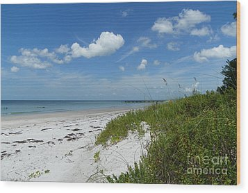 Wood Print featuring the photograph Beautiful Beach Day by Carol  Bradley