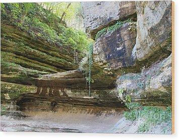 Beautiful Canyon Wood Print by Milena Ilieva
