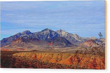 Beautiful Desert Wood Print
