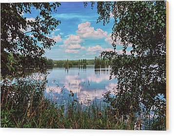beautiful forest lake in Sunny summer day Wood Print