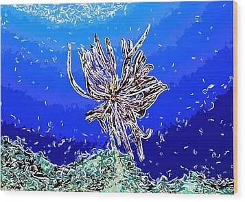 Beautiful Marine Plants 1 Wood Print by Lanjee Chee