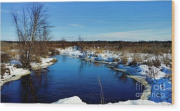 Beautiful Necedah Wildlife Refuge  Wood Print by Ricky L Jones