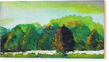 Beautiful Ohio Wood Print by Mindy Newman