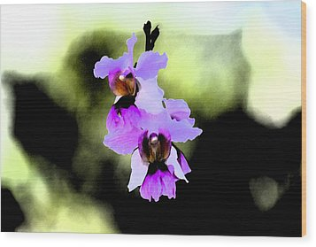 Beautiful Orchid Wood Print by Nanette Hert