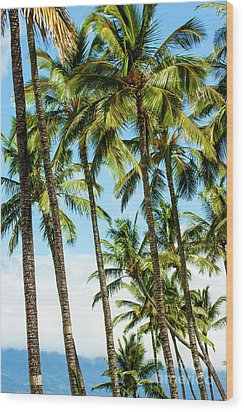 Wood Print featuring the photograph Beautiful Palms Of Maui 16 by Micah May