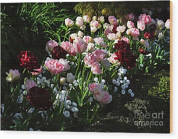 Beautiful Spring Flowers Wood Print by Louise Heusinkveld